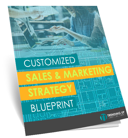 Marketing and Sale Blueprint - Booklet v2.png