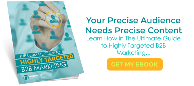 Your precise audience needs precise content. Download the Ultimate Guide to Highly Targeted B2B Marketing.
